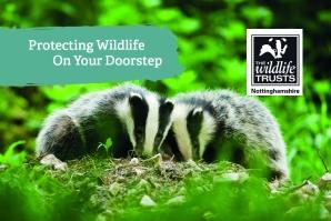 Badger Membership Business Card Front