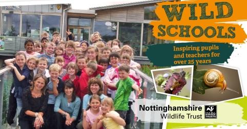 FB. 2.Wild School Classroom