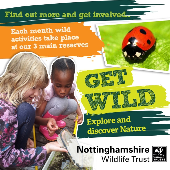 Get Wild Pond Dipping