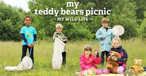 My Teddy Bears Picnic