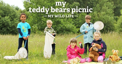 My Teddy Bears Picnic