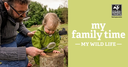 My Wild Family Time