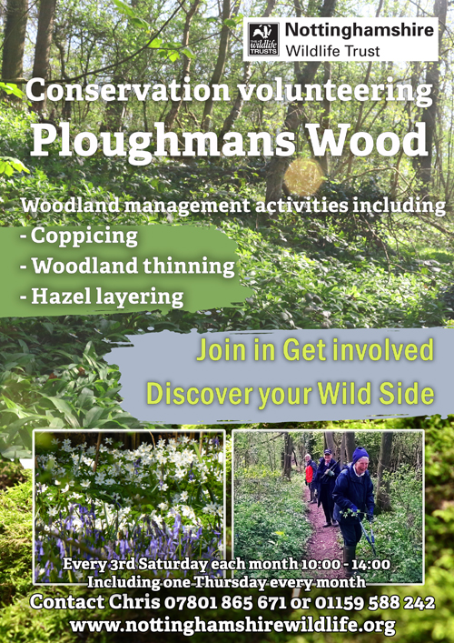 Ploughmans Wood Volunteer Poster