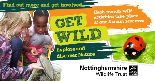 Pond Dipping Get Wild