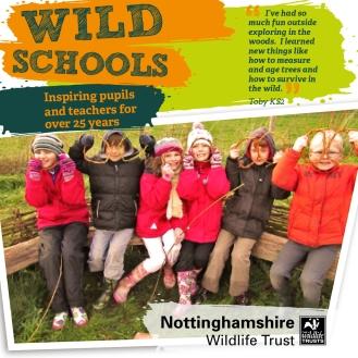 Wild Schools Children